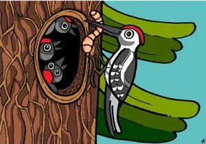 Pohlednice k Pohádkám z lesa - zvířátka
